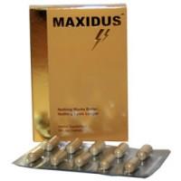 Maxidus bestellen